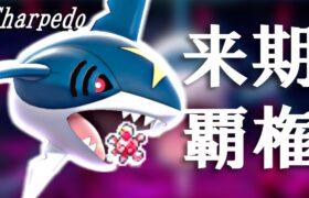 来期覇権確定のサメハダー、実は今期も強い【ポケモン剣盾】