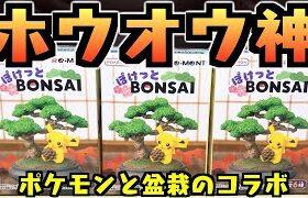 【食玩】ホウオウ神すぎる『ポケモン ぽけっとBONSAI』開封レビュー【おもちゃ】フィギュア クチートもラインナップ!