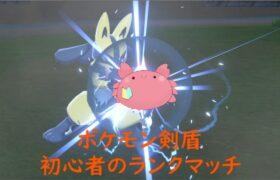 【ポケモン剣盾】 初心者のランクマッチ!#6【Vtuber】
