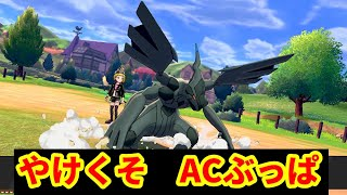 【ライブ配信】ACぶっぱゼクロム【ポケモン剣盾ランクマ】