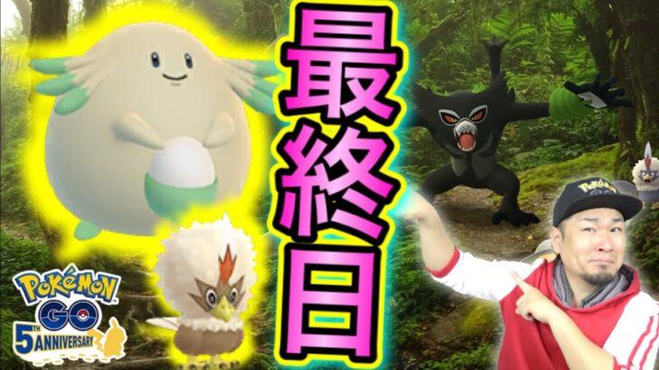 ココ公開記念イベント最終日!ラッキー、ワシボン、色違い狙い納め!!【ポケモンGO】