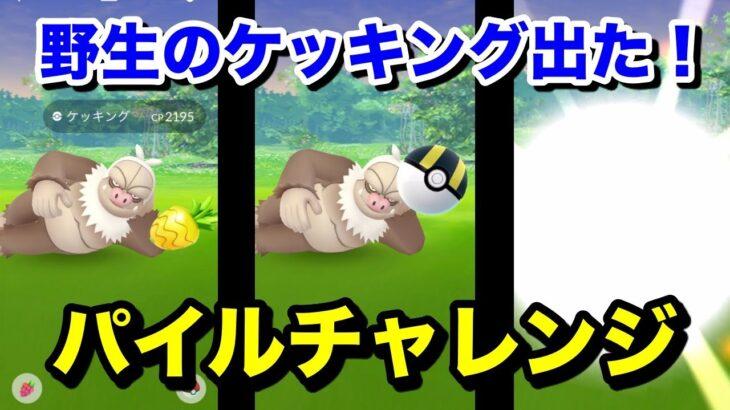 【ポケモンGO】超久しぶりの激レアパイルチャレンジ!