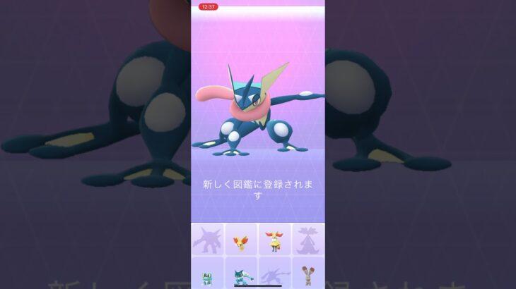 ゲコガシラ→ゲッコウガ ポケモンgo  ポケモンGO PokémonGO japan
