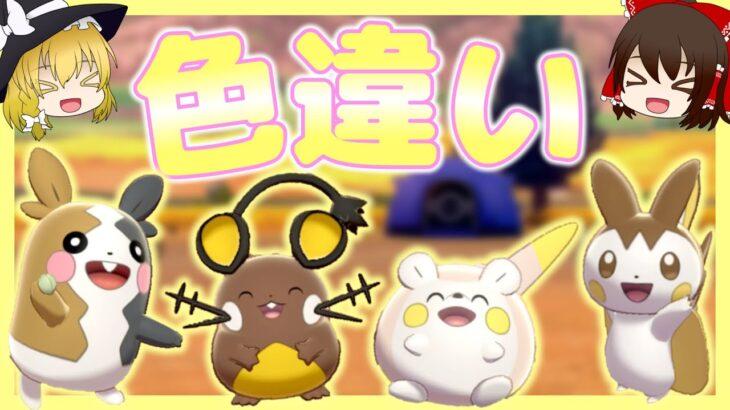 【ポケモン剣盾】色違いの電気ネズミたちが超可愛いらしい【ゆっくり実況】